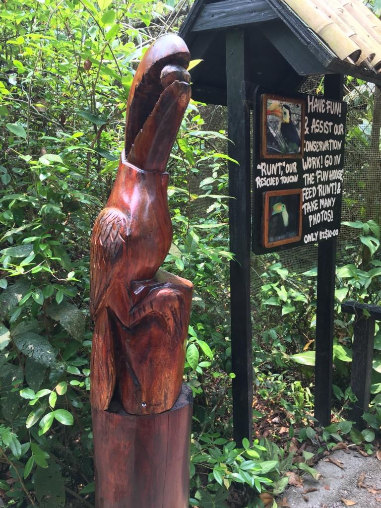 ベリーズ動物園 オオハシ説明看板