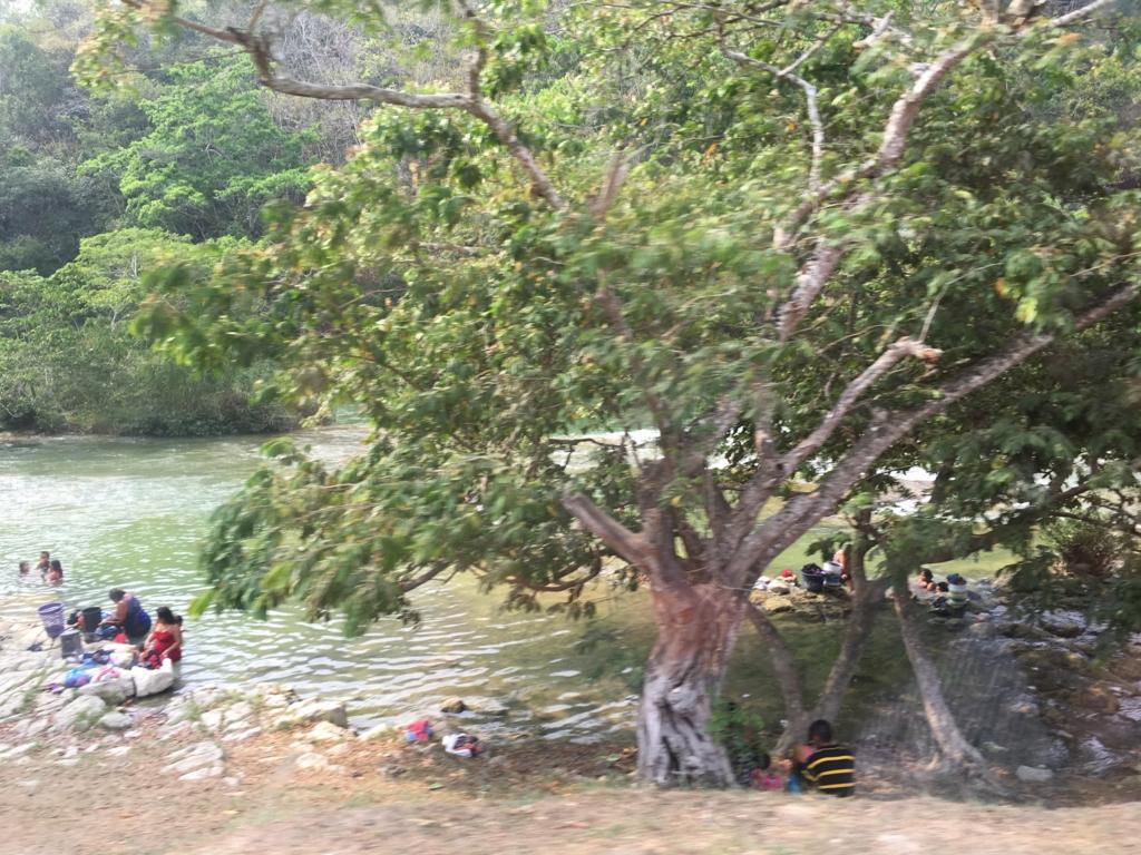 ベリーズ グアテマラ国境付近 マカル川 洗濯