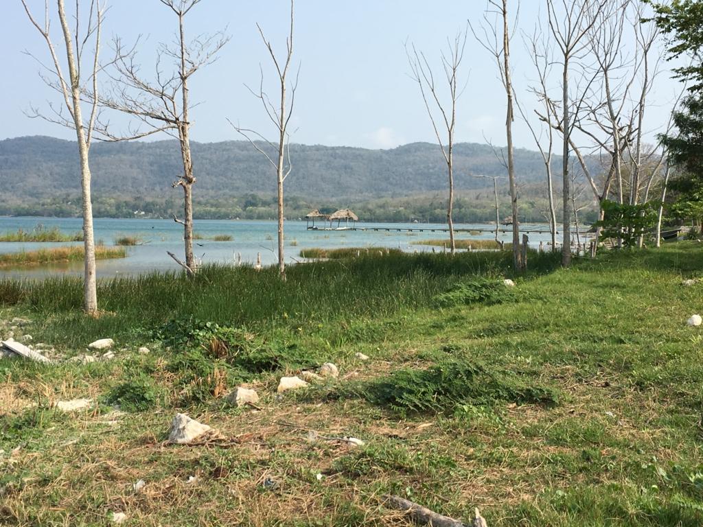 グアテマラ エルレマテ ペテンイツァ湖