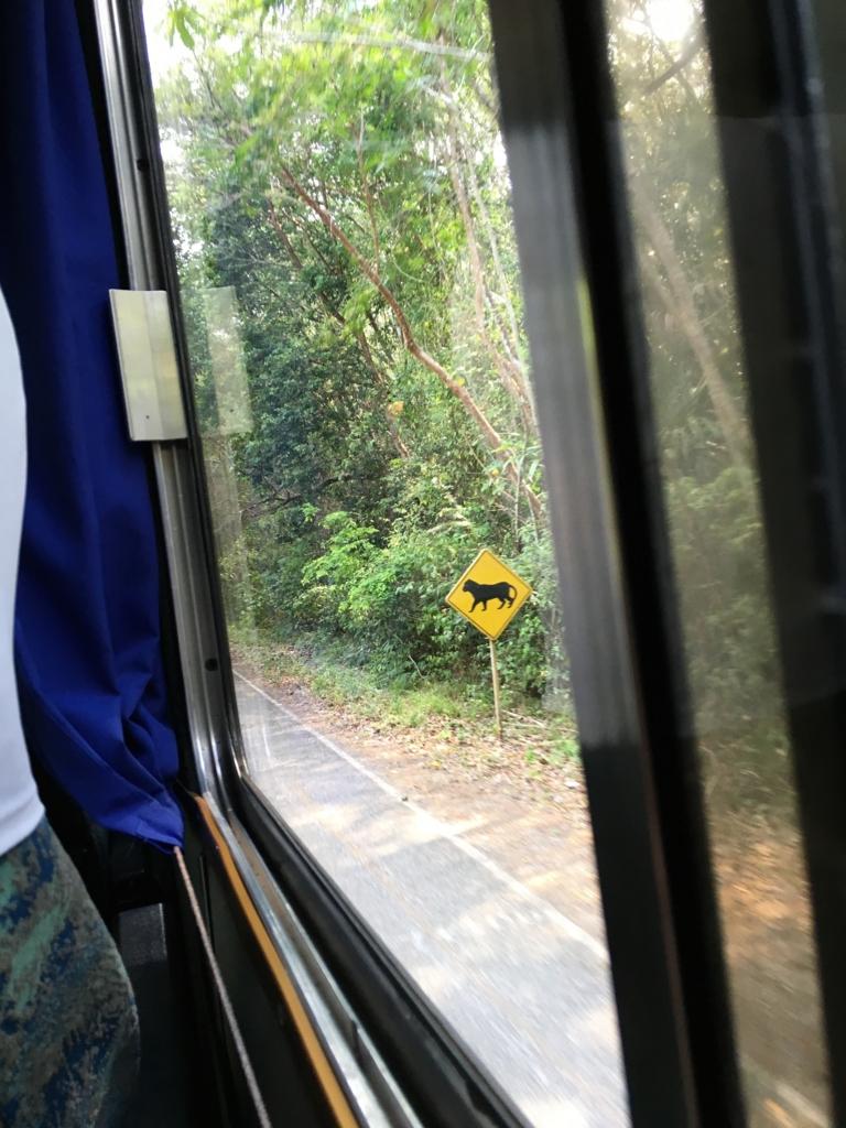 グアテマラ ティカル国立公園 この動物に注意 看板