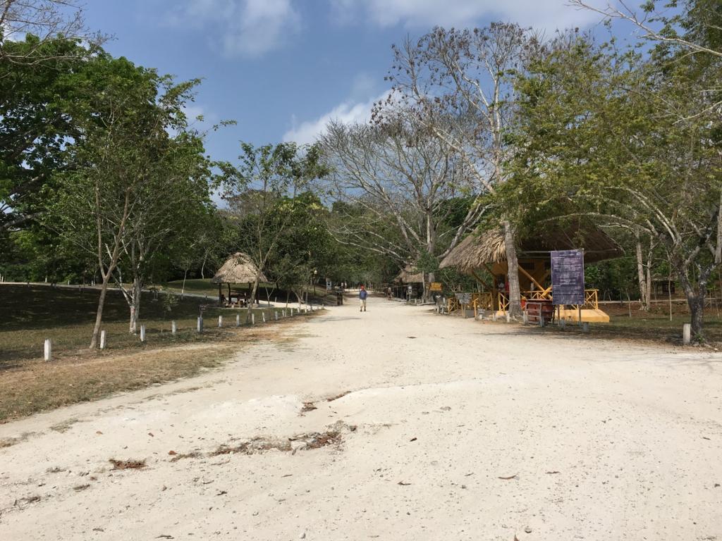グアテマラ ティカル国立公園 売店付近