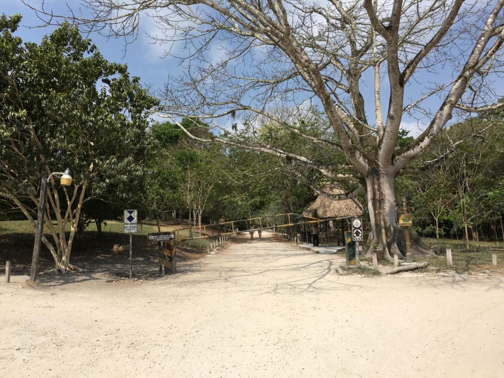 グアテマラ ティカル国立公園 遺跡群入り口付近