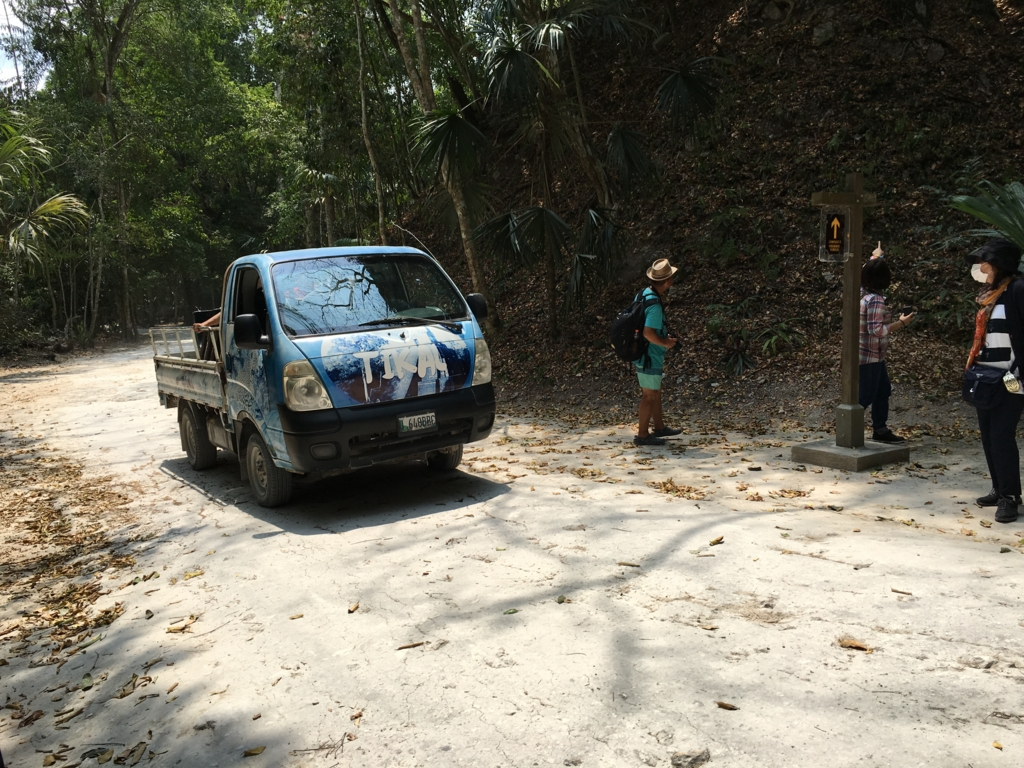 ティカル国立公園 ジャングル内の道