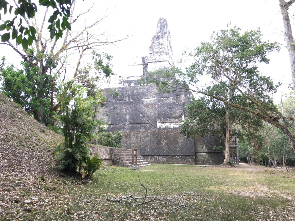 グアテマラ ティカル国立公園 2号神殿 横