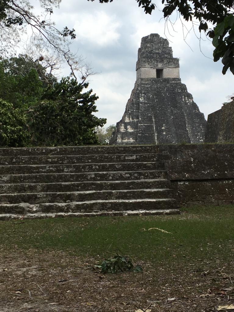 グアテマラ ティカル国立公園 1号神殿 遠望