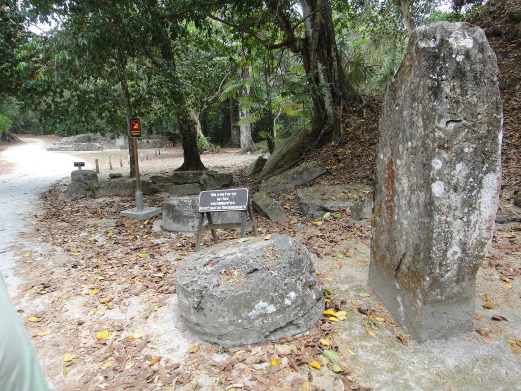 グアテマラ ティカル国立公園 コンプレッホN
