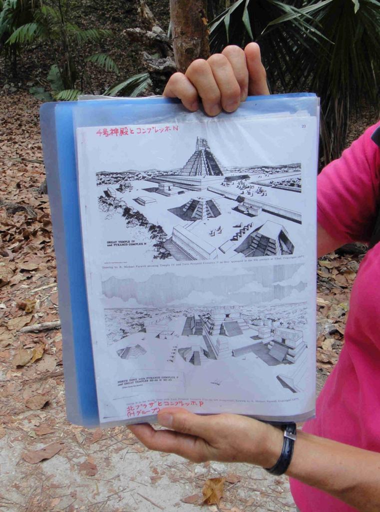 グアテマラ ティカル国立公園 コンプレッホN ガイドさん説明