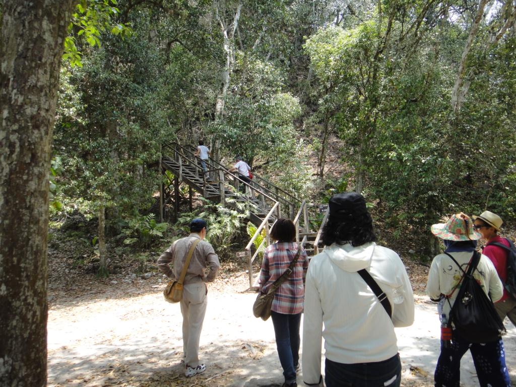 グアテマラ ティカル国立公園 4号神殿 階段