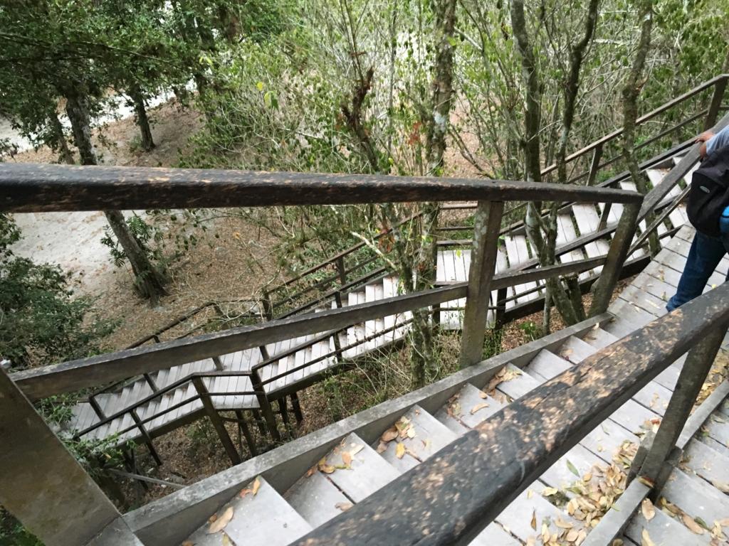 グアテマラ ティカル国立公園 4号神殿 長い 階段