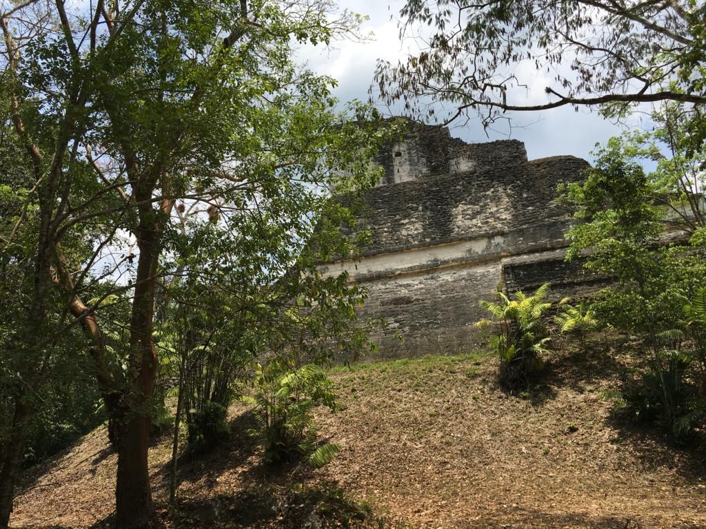 グアテマラ ティカル遺跡 「失われた世界」ピラミット側面