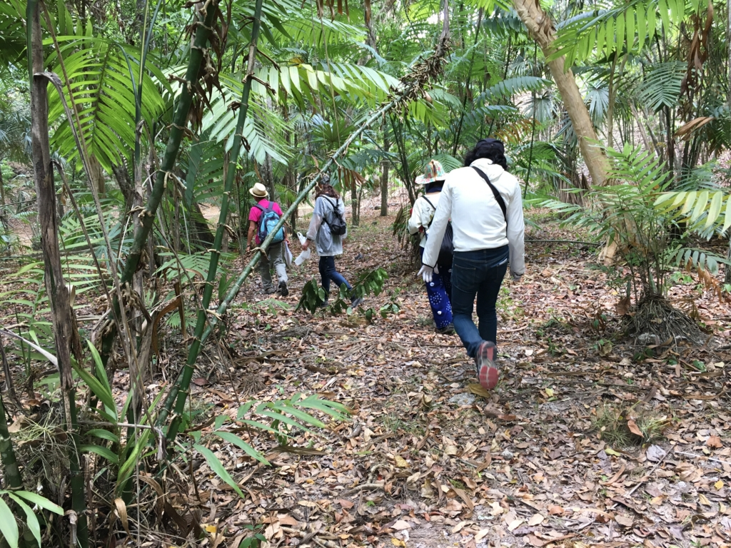 グアテマラ ティカル遺跡 「失われた世界」を後にジャングルへ