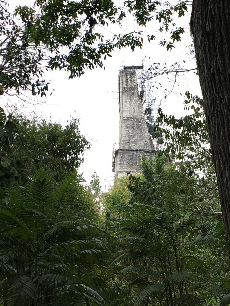 グアテマラ ティカル遺跡 「失われた世界」付近 3号神殿 遠望