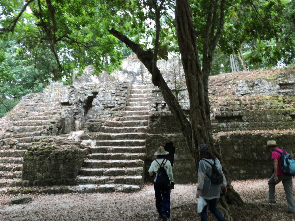 グアテマラ ティカル遺跡 「7つの神殿広場」 未発掘の神殿