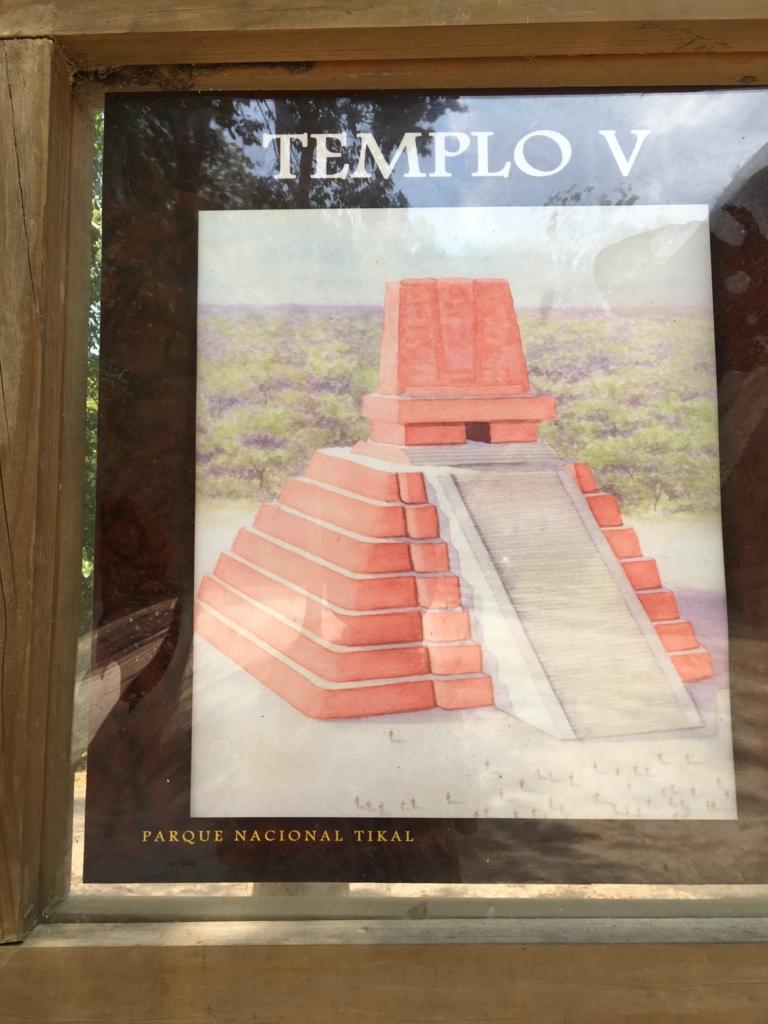 グアテマラ ティカル遺跡 「5号神殿」看板