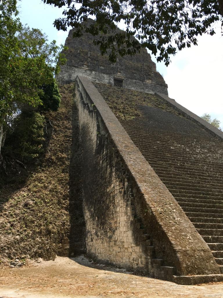 グアテマラ ティカル遺跡 「5号神殿」撤去された階段