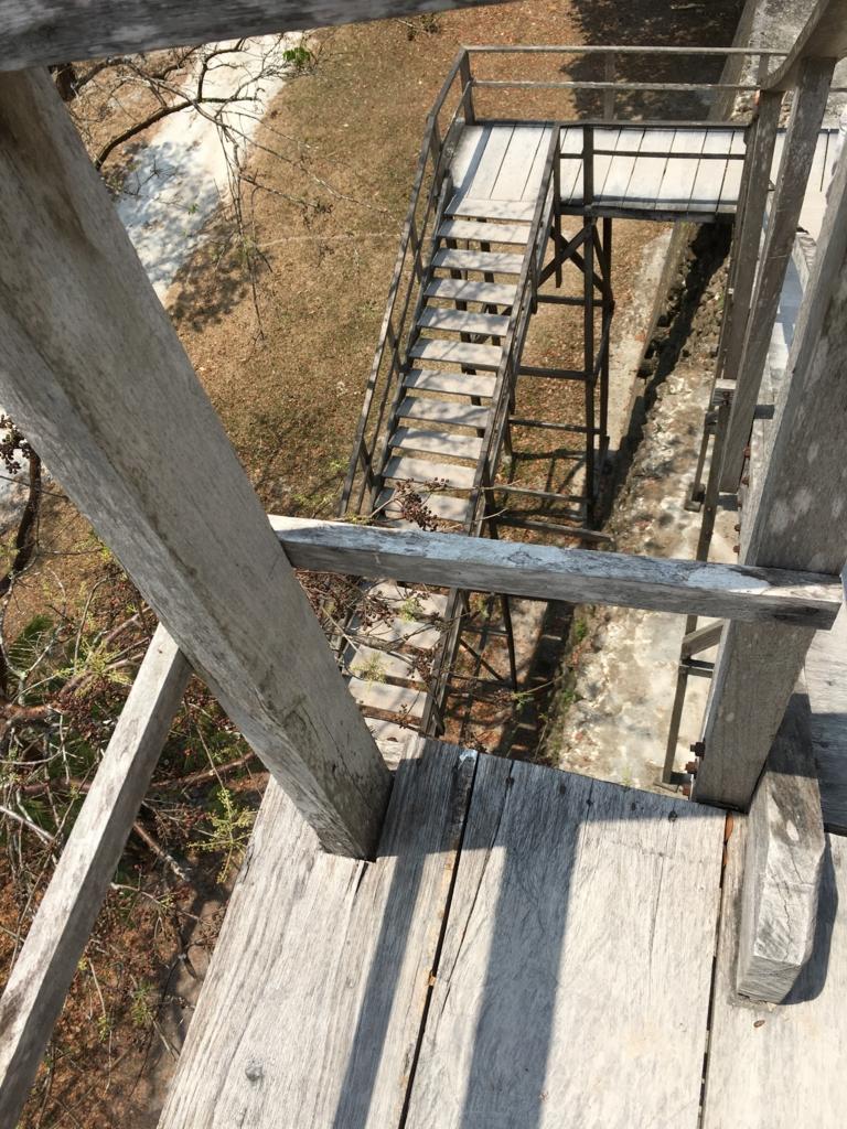 グアテマラ ティカル遺跡 「2号神殿」階段 上