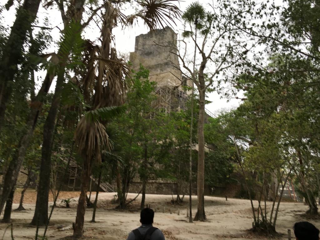 グアテマラ ティカル遺跡 「2号神殿」背面