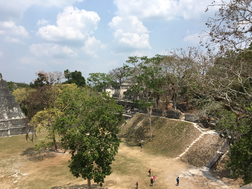 グアテマラ ティカル遺跡 「2号神殿」頂上より セントラルアクロポリス