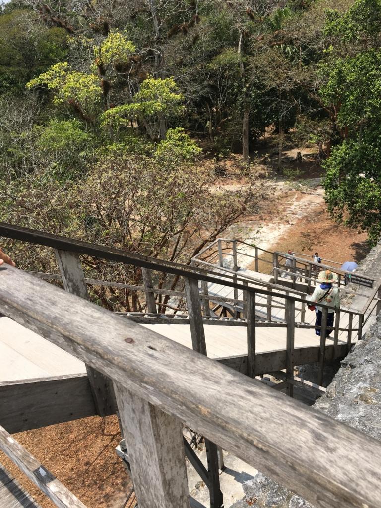 グアテマラ ティカル遺跡 「2号神殿」階段