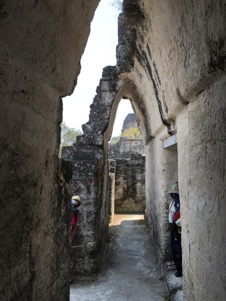 グアテマラ ティカル遺跡 セントラルアクロポリス マーラー宮殿 マヤアーチ