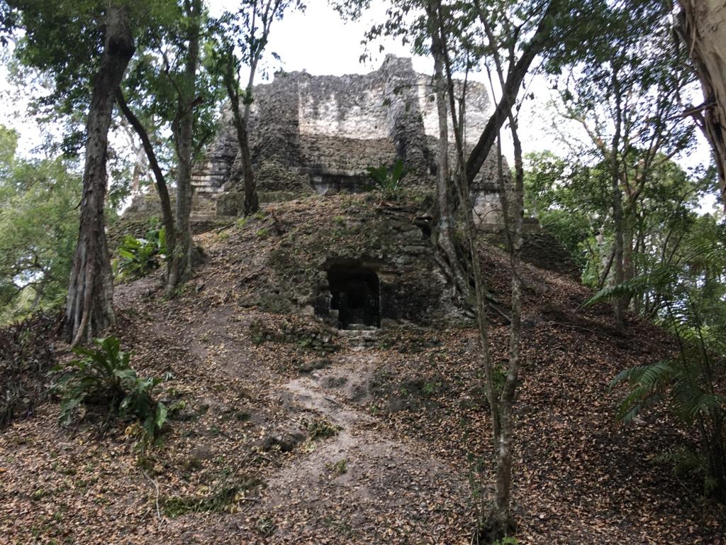 グアテマラ ティカル遺跡 グループG 38神殿