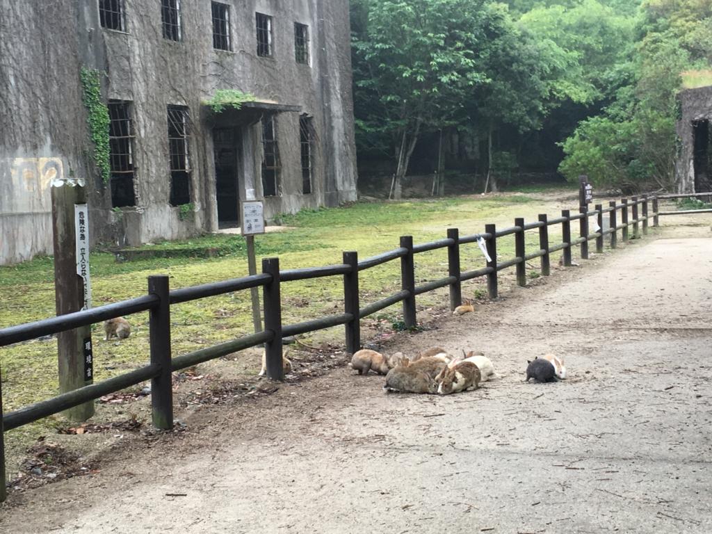 2回目のうさぎ島 大久野島 発電所跡