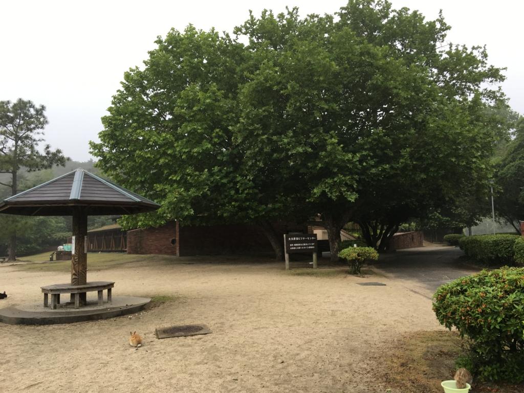 2回目のうさぎ島 大久野島 ビジターセンター付近