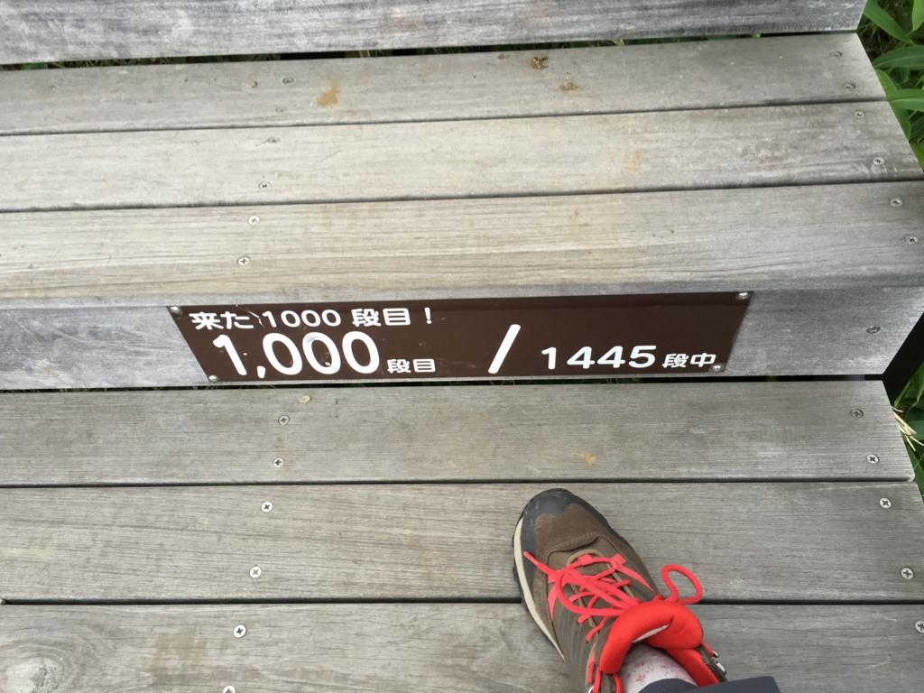 「霧降高原」天空回廊 階段 段数表示 1000段目