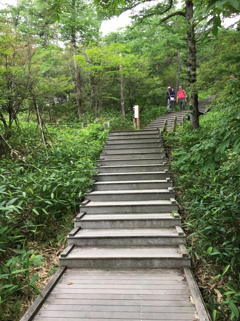 「霧降高原」遊歩道 「D」への階段