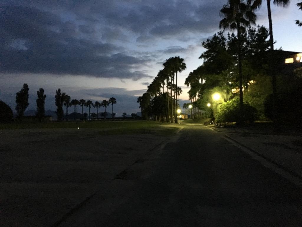 うさぎ島(大久野島)夜の休暇村付近