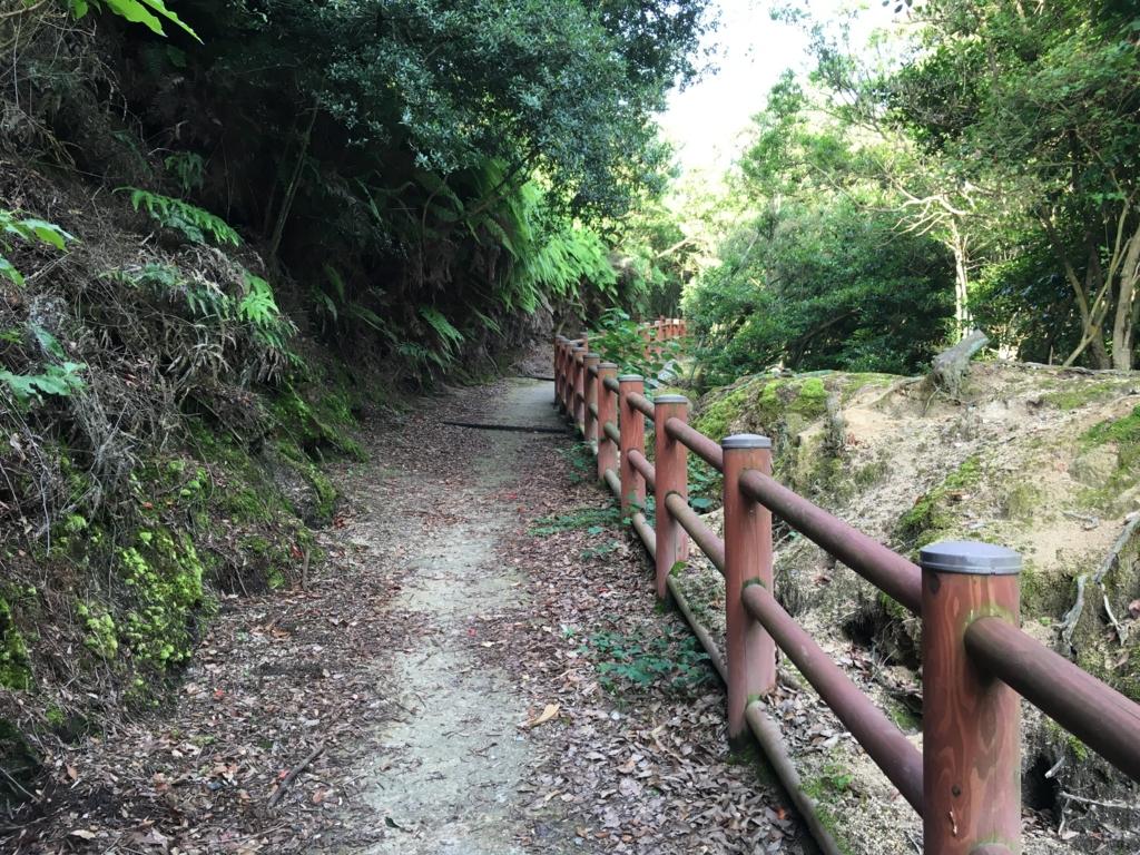 うさぎ島(大久野島)南部照明所跡への道