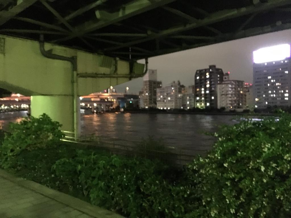 「浜町公園」夜 隅田川添いの遊歩道より