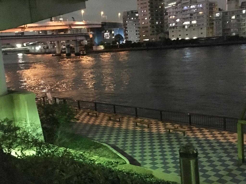 「浜町公園」夜 隅田川添いの遊歩道下