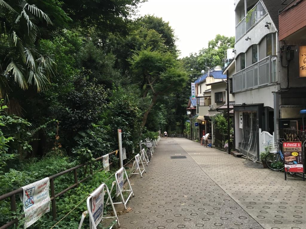 「井の頭公園」吉祥寺駅からの道
