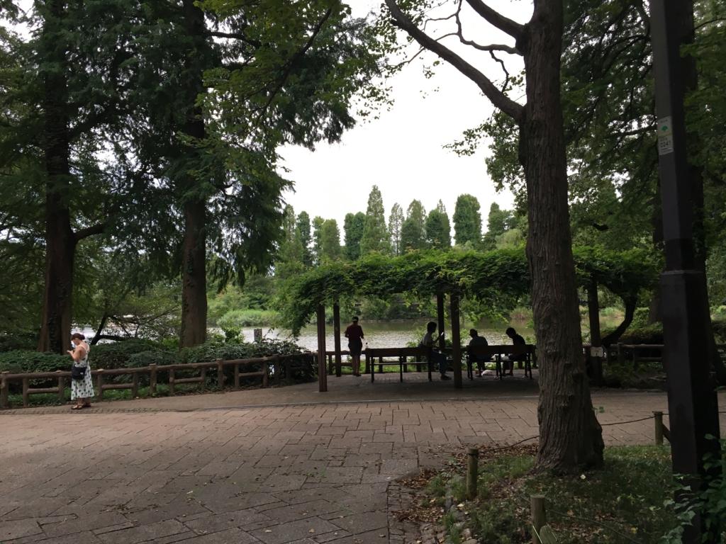 「井の頭公園」吉祥寺駅から ボート池付近