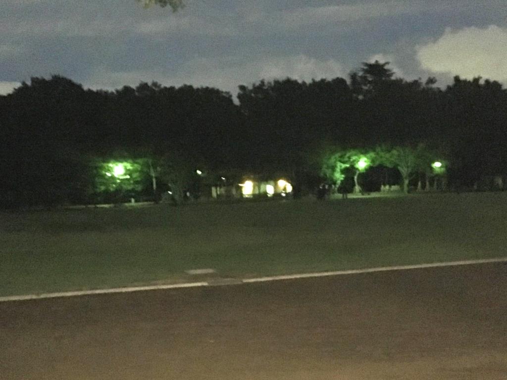 「井の頭公園」三鷹の森ジブリ美術館付近 夜 トラック