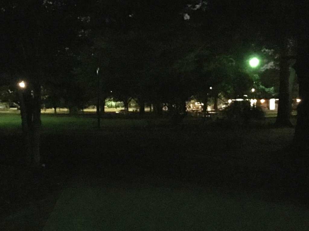 「井の頭公園」三鷹の森ジブリ美術館付近 夜