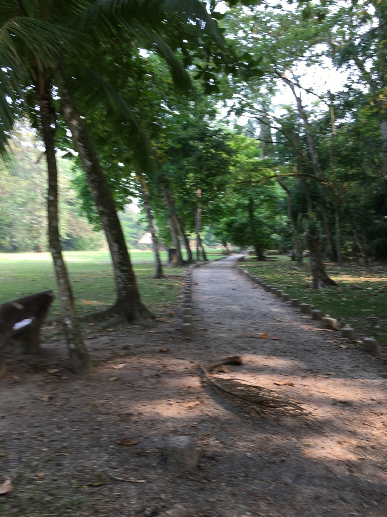 グアテマラ キリグア遺跡 遊歩道