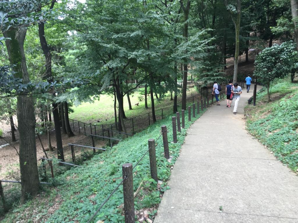 「小山内裏公園」少し離れた入り口からの舗装された道