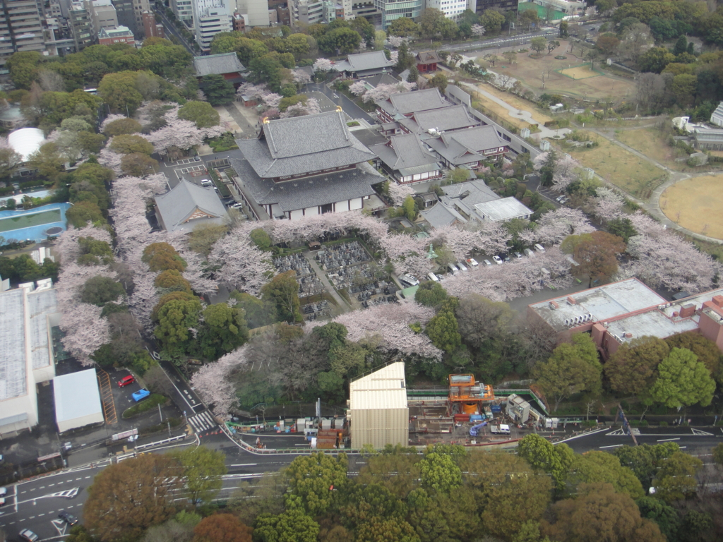 はとバス 定期観光「ゆったり東京めぐり」東京タワーから増上寺付近