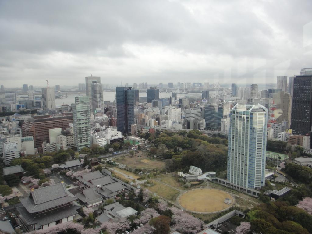 はとバス 定期観光「ゆったり東京めぐり」東京タワーから増上寺方向 海