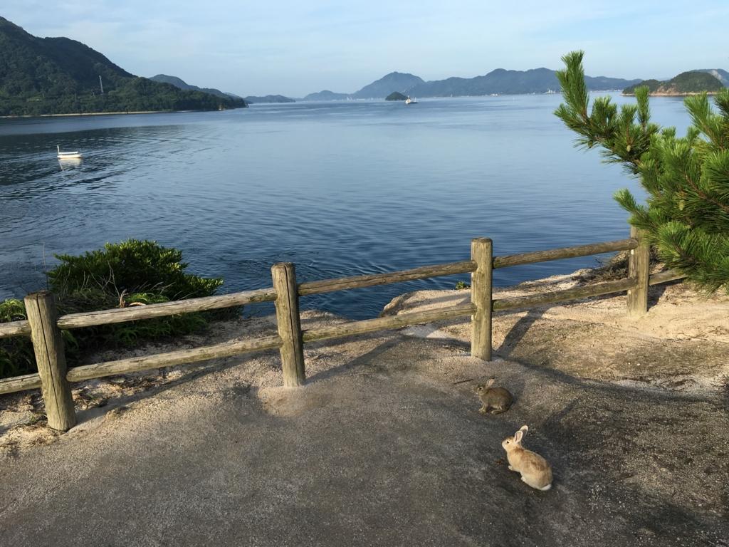 大久野島 うさぎ島 展望広場