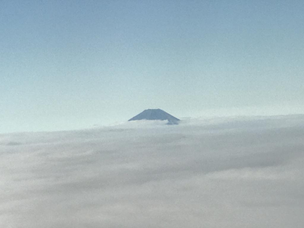 JL253便 車窓より富士山 発見
