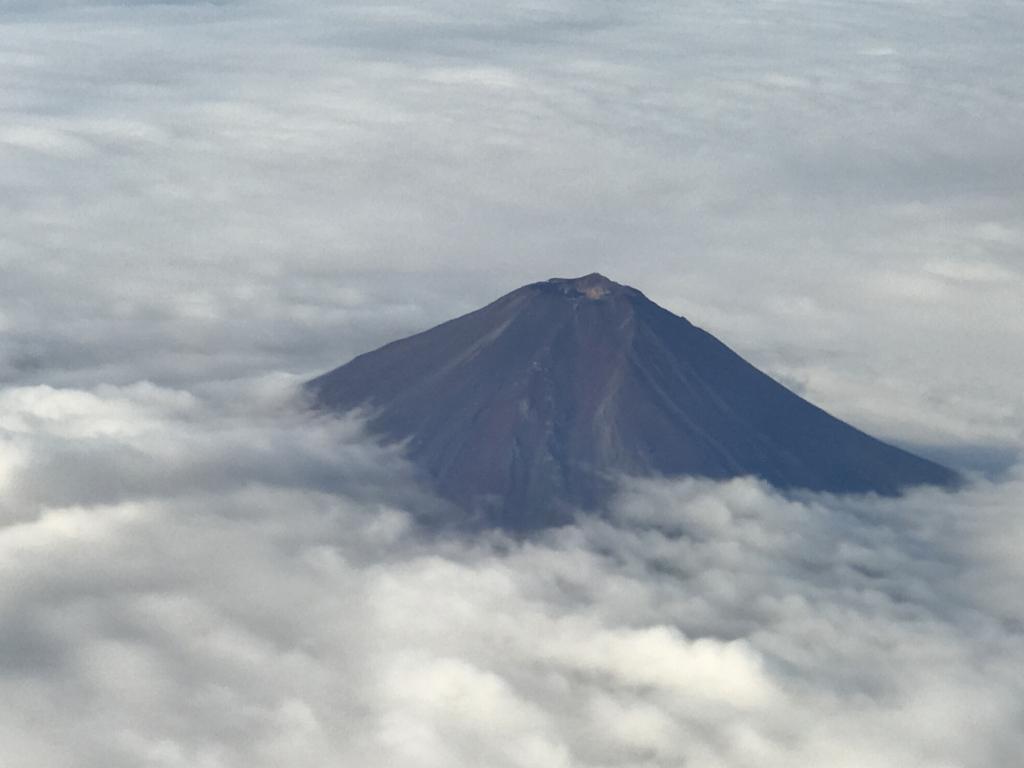 JL253便 車窓より富士山 拡大