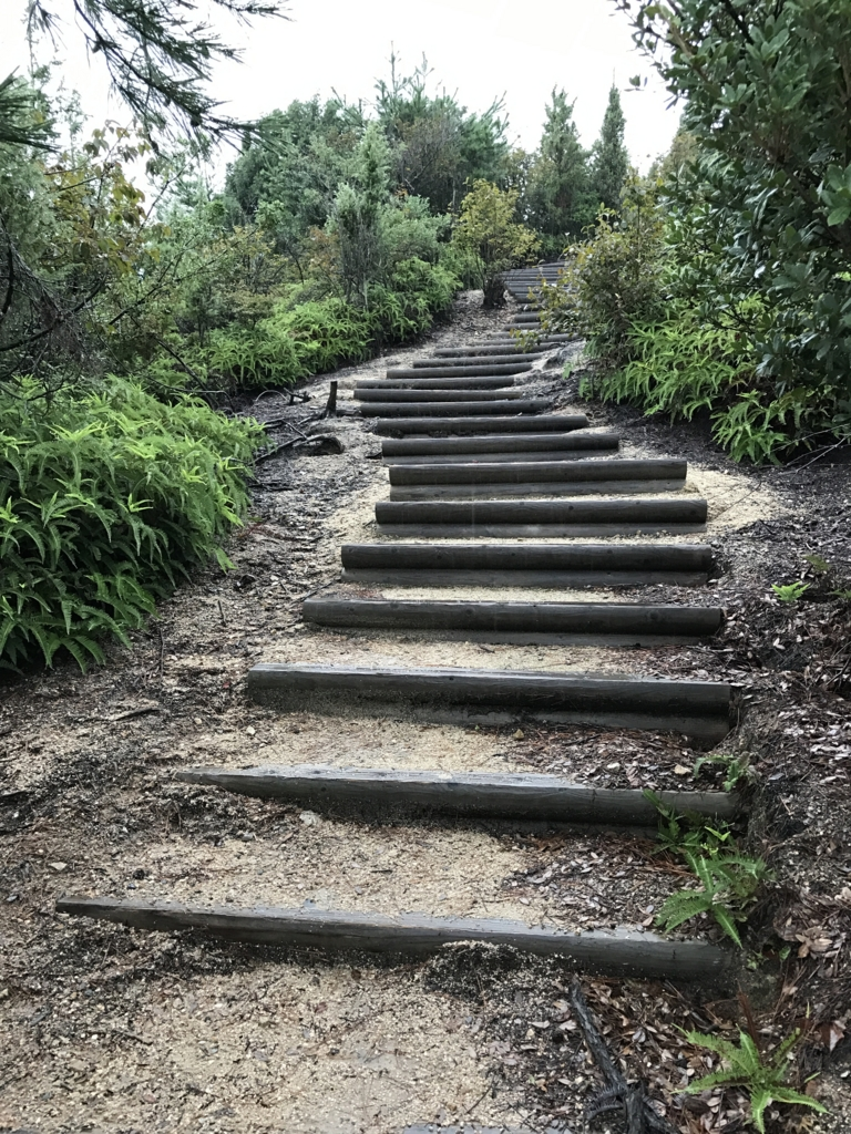 うさぎ島(大久野島) 南部照明所跡への 階段