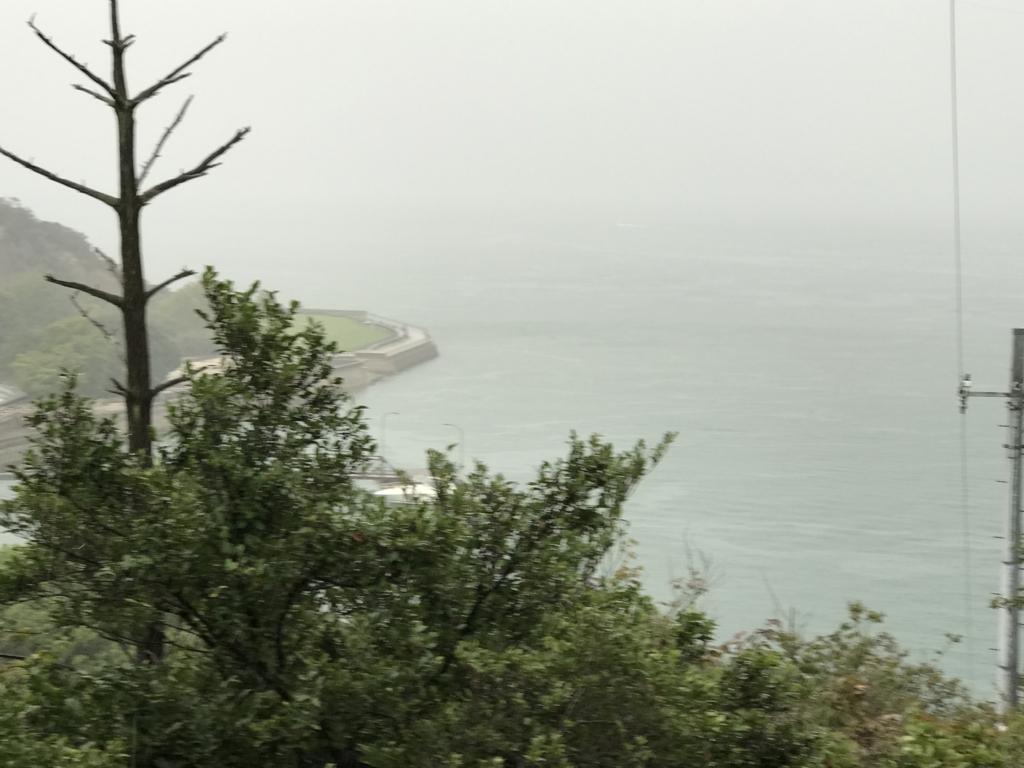 うさぎ島(大久野島) 南部照明所跡から 東側