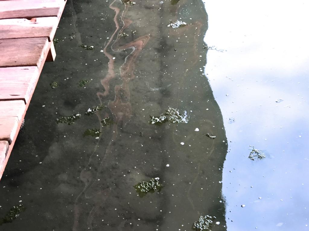 宮島 満潮時の 厳島神社 海水