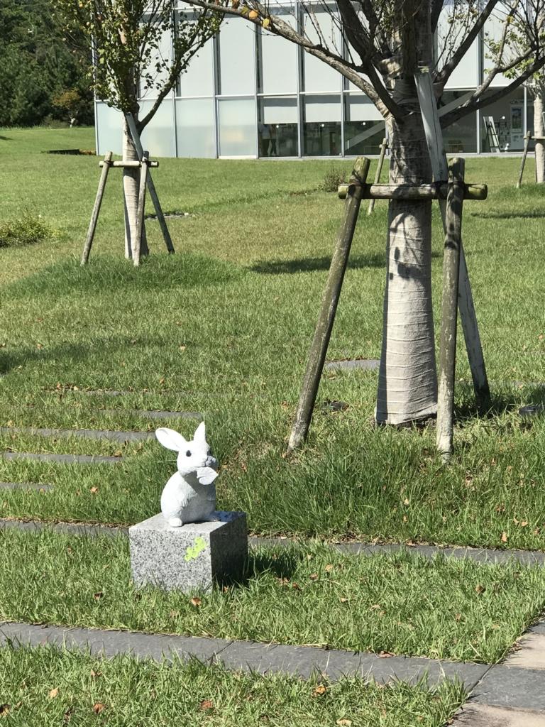 「島根県立古代出雲歴史博物館」庭 うさぎさん石像