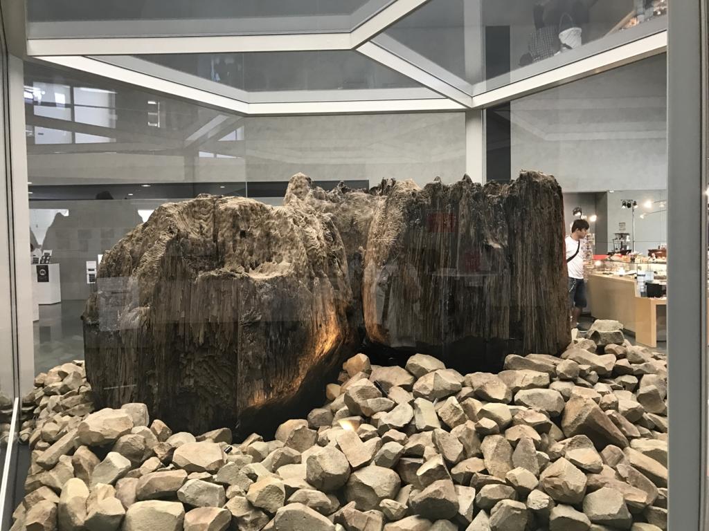 「島根県立古代出雲歴史博物館」発掘された巨大柱