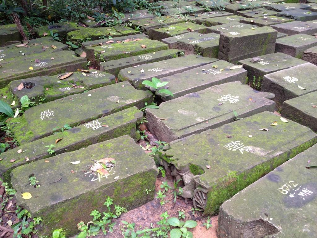 カンボジア シェムリアップ 「タ プローム」遺跡 インド政府 発掘した石に番号